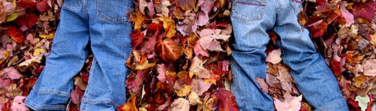 automne quebec photos