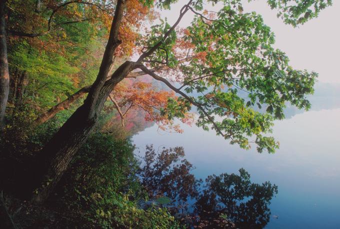 Un lac en automne