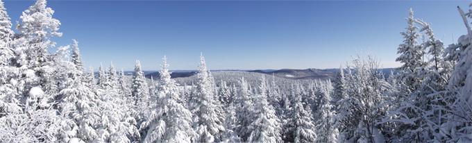 photo panoramique de l'hiver québécois
