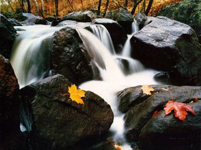 Rivière d'automne au Canada