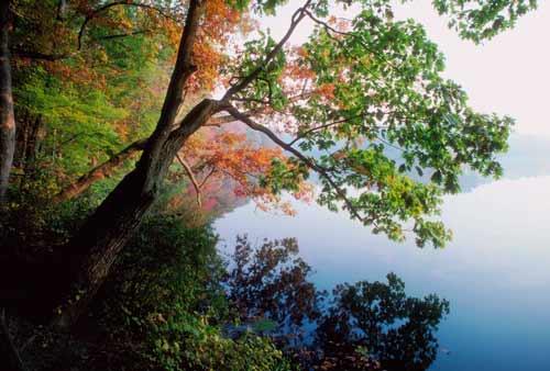automne canada