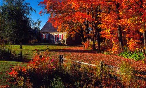 image automne canada