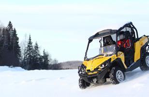 buggy-neige