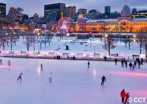 Parc en hiver a Montreal