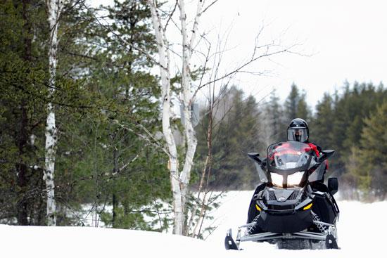 motoneige au canada en forêt