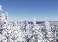 Voyage hiver au Canada