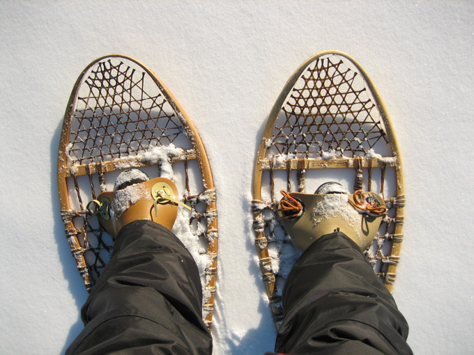 randonnée raquettes au canada