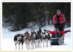 Photo du traineau à chiens par nos voyageurs