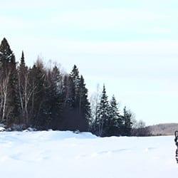 buggy des neige