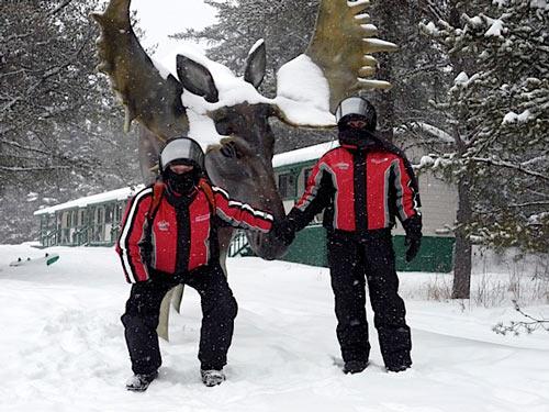 orignal sous neige