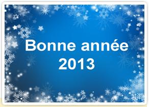 Bonne année 2013 avec tous nos voeux