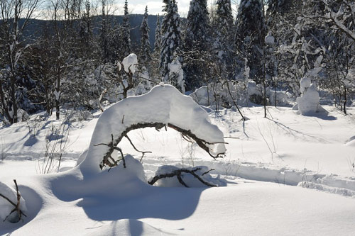 arc neige