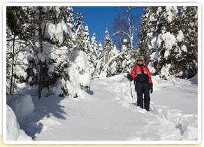 Blanche neige au Québec
