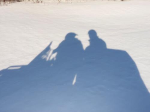 ombres au tableau