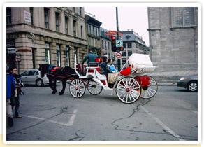 Que faire et où aller à Montréal ?