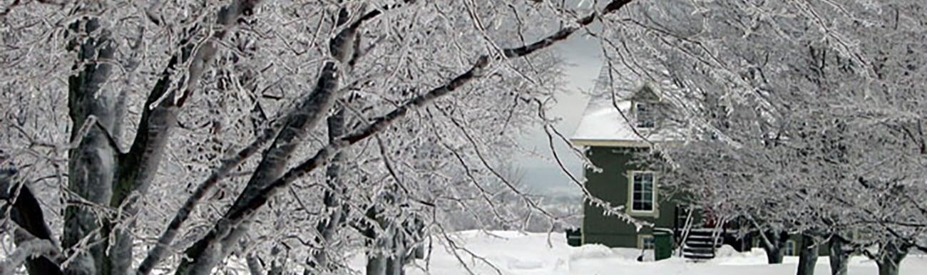 conseils photos photographie en hiver