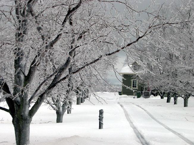 Quebec en hiver