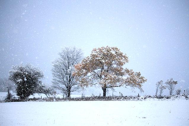 quebec première neige 17 octobre 2015