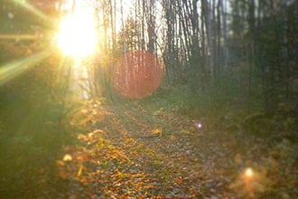 automne nouveau monde