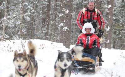 circuit chien traineau au canada