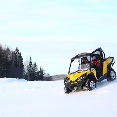 buggy neige