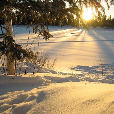 hiver canadien