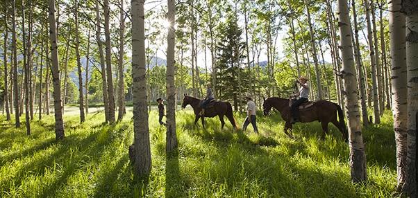 randonnee cheval canada