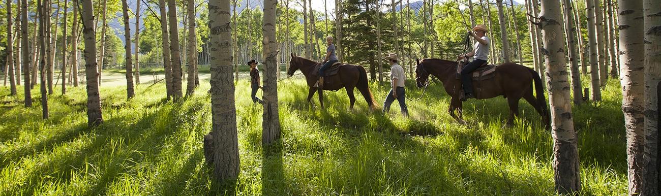randonnee a cheval quebec