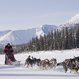 sport hivernal au canada