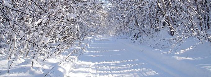 trail motoneige