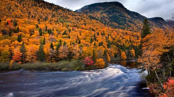 parc national de la Jacques-Cartier automne