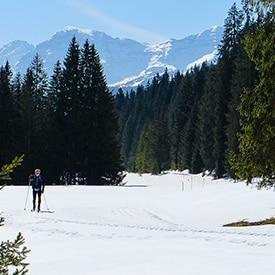 le ski de fond au quebec