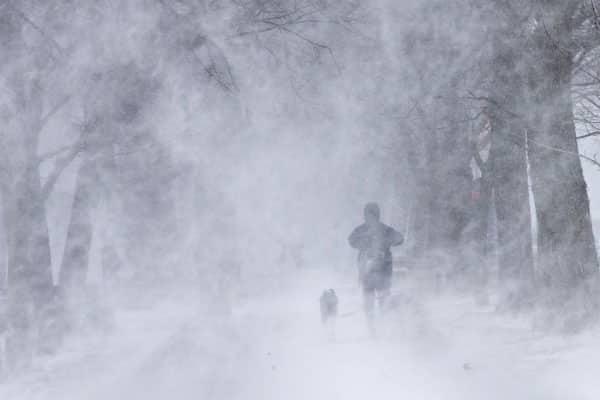 Tempête de neige 2017