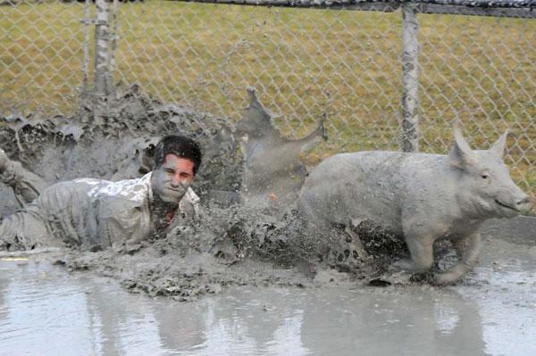 Festival du cochon
