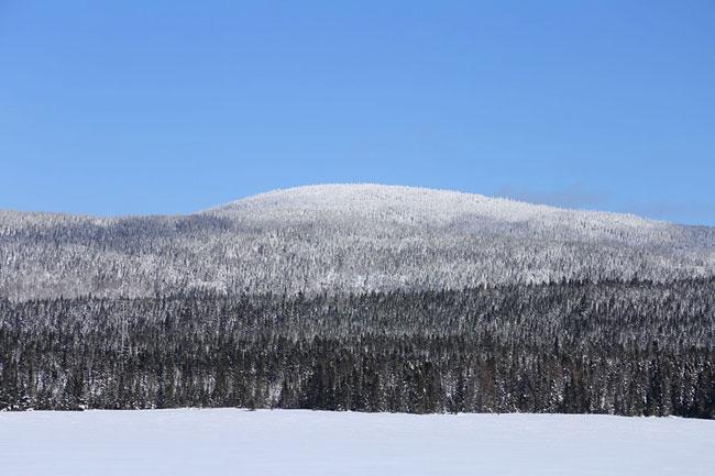 lac et montagne hiver