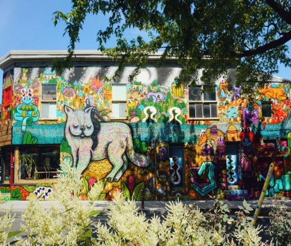 murale EXPLORING THE DESERT