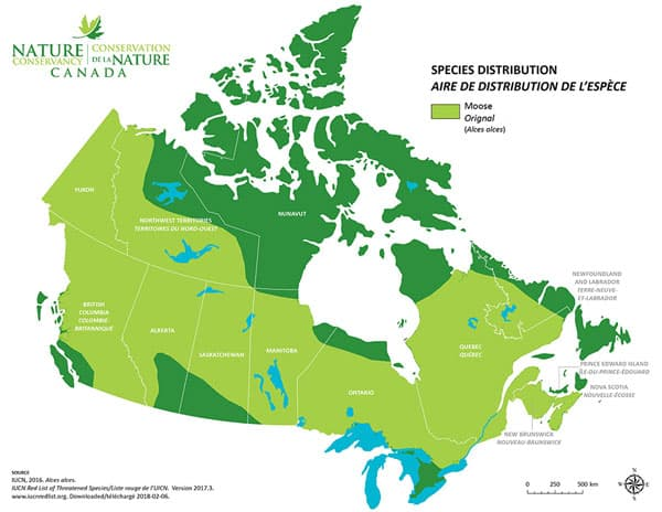 Habitat orignal canada
