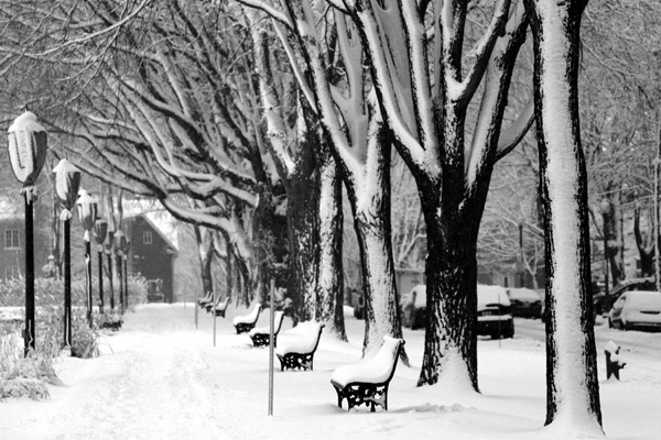ville de quebec hiver