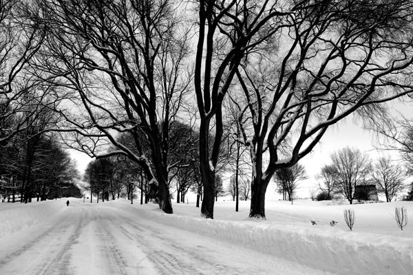 Parc des Champs-de-Bataille en hiver