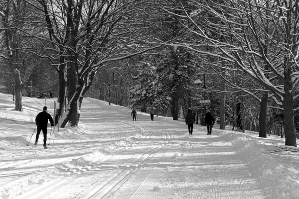 ski de fond plaine d'Abraham