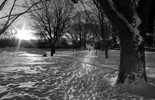 parc des braves en hiver