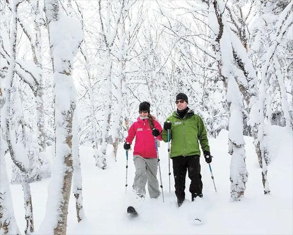 ski hok québec